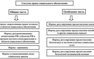 1 система права социального обеспечения