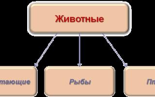 Класс ориентированное программирование