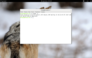 Посмотреть версию ядра linux